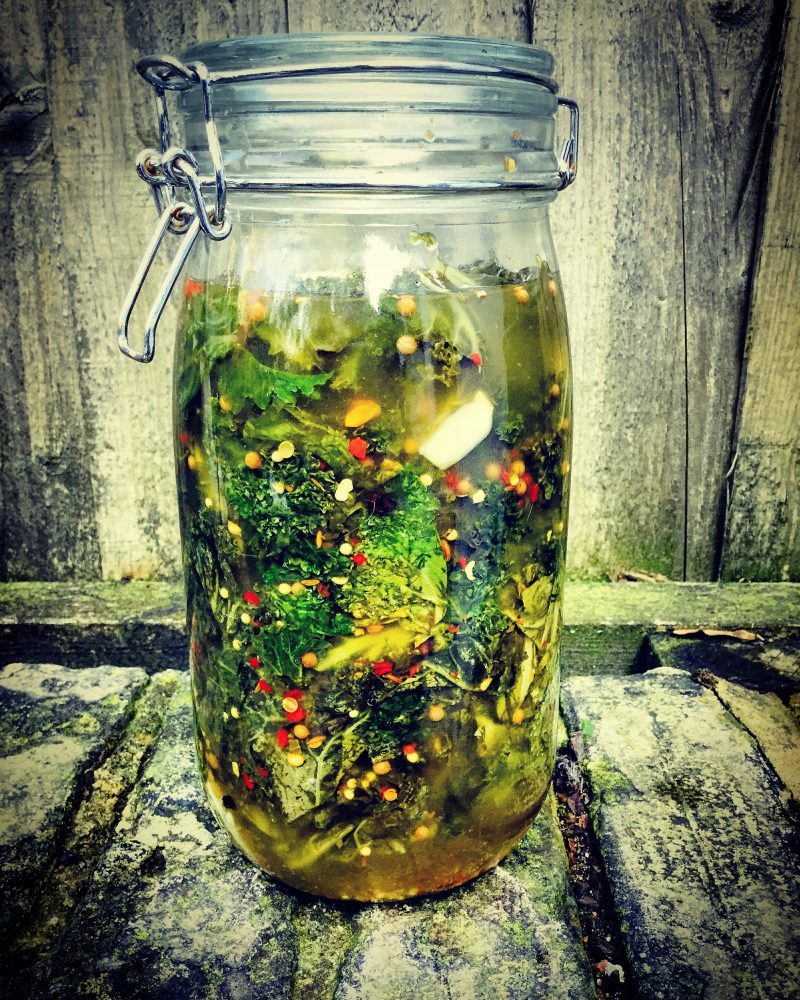 best fermented kale recipe