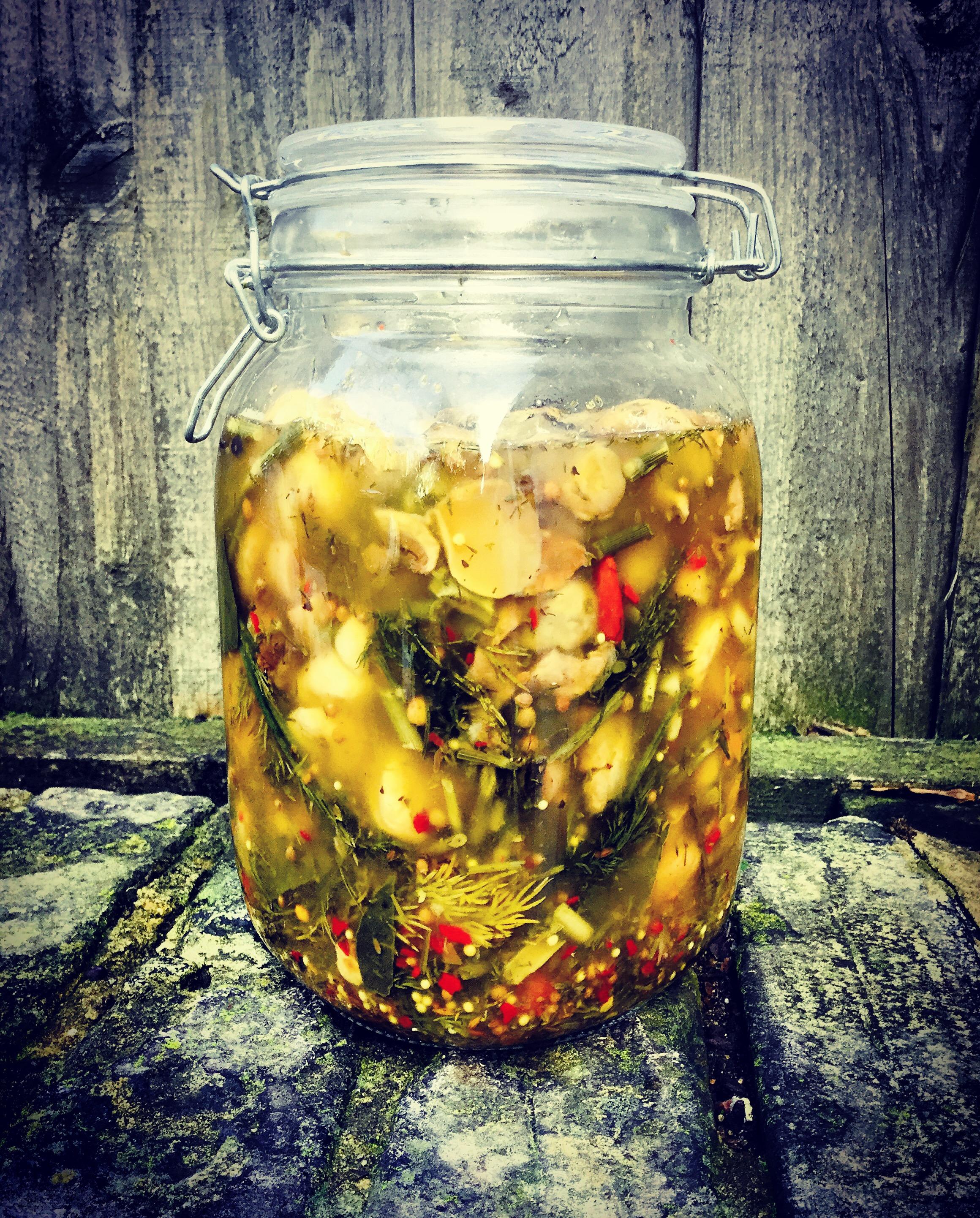 Best Fermented Mushroom Recipe