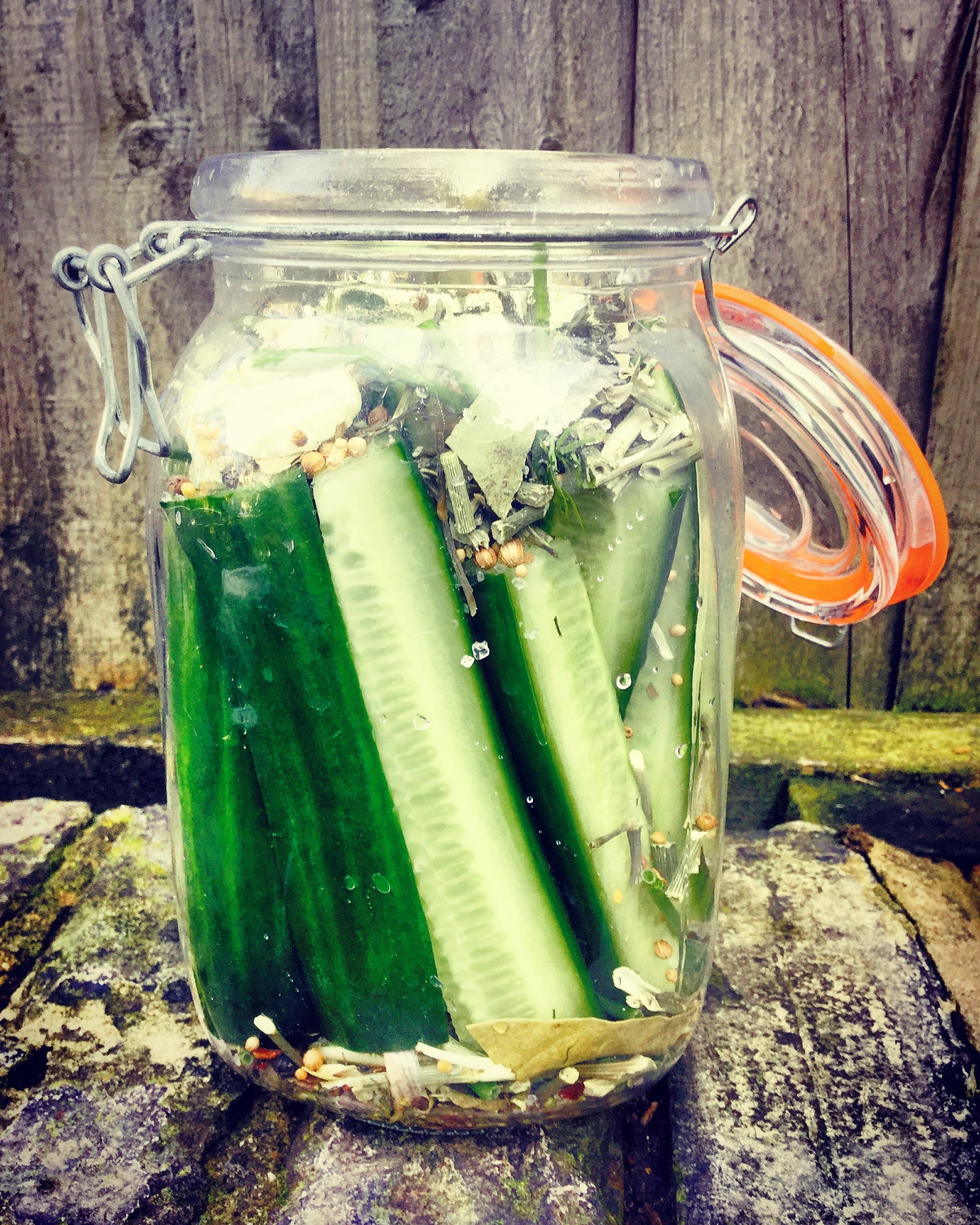 Best Fermented Cucumber Recipe